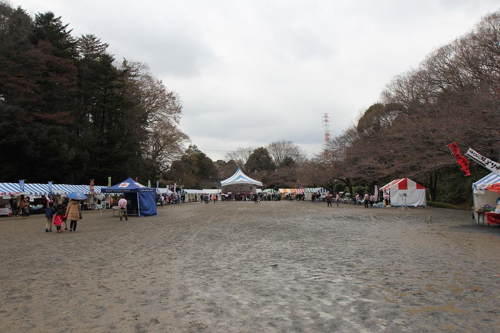 町田さくらまつり,2017