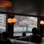 雨のお花見~隅田公園から東京クルーズ(水上バス)